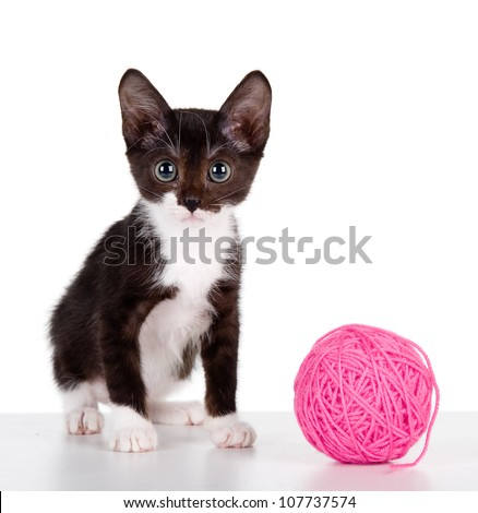 Kitten with a ball of yarn.  isolated on white background