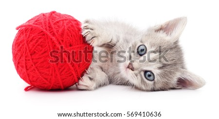 Shutterstock Kitten with ball of yarn isolated on white background.