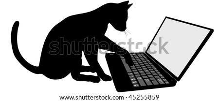 Kitty cat on the keyboard of laptop computer logs onto Internet website.