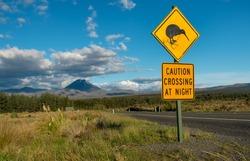 Kiwi crossing road sign with Mt Ngauruhoe (aka Mt Doom) towering in the distance.