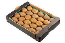 Kiwi fruit in a carton box isolated on white