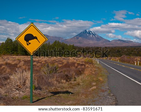 Kiwi warning sign with volcano in the  rear