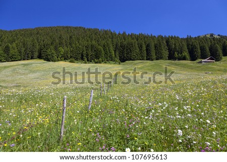 Kleinwalsertal (little Walser valley) is a part of Austria