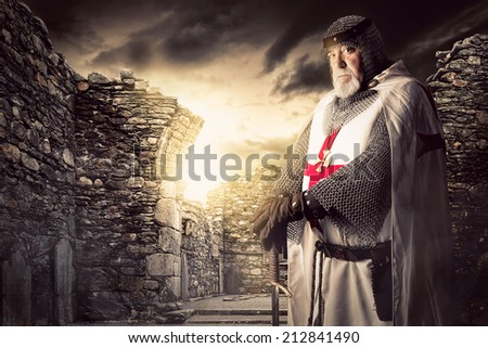 knight templar posing near some ...