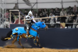 Knights tournament. Horseman with a spear