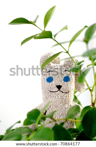 Knitted toy in the green leaves on a white background