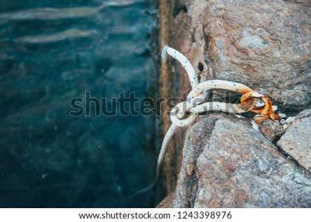 knot on a dock #1243398976