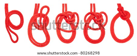 knot series :  bowline on a bight for scout army sailor secure survival camping and education or printing