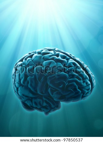 Knowledge and creativity concept illustration with human brain