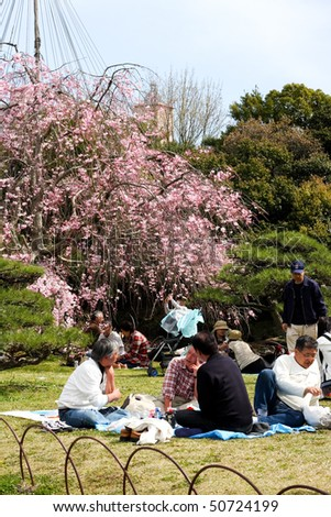 KOBE, JAPAN - APRIL 10: Cherry blossom celebration at Akashi Castle on April 10, 2010 in Kobe, Japan.