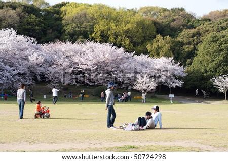 KOBE, JAPAN - APRIL 10: Cherry blossom celebration at Akashi Castle on April 10, 2010 in Kobe, Japan.