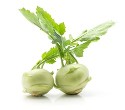 Kohlrabi (German turnip or turnip cabbage) two raw bulbs with fresh leaves isolated on white background