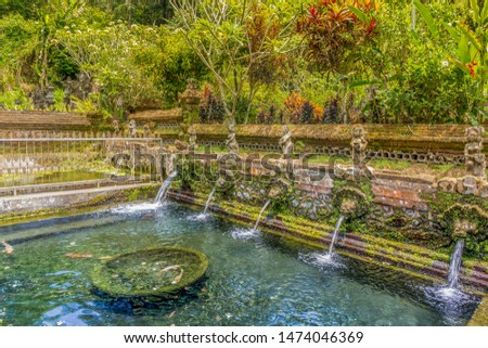Koi pond with koi fish swimming in clear holy spring water at Gunung Kawi Sebatu Temple with stone sculpture fountains surrounded by tropical & exotic plants & exotic forests in Bali, Indonesia, Asia