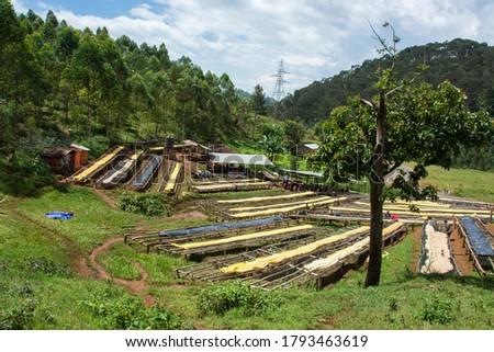 Kokabanya Washing Station in the Lake Kiva region of Rwanda May 2015