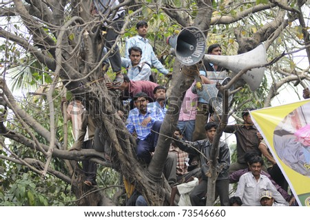 KOLKATA - FEBRUARY 20: Supporters of All India Trinamool Congress climbed a tree to see the speakers during a rally organized to kick the 2011 election champagne, in Kolkata, India on February 20,2011.