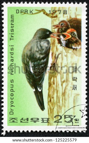 "KOREA - CIRCA 1978: A stamp printed in North Korea shows Woodpecker feeding young with inscription ""Dryocopus javensis richardsi"", series ""White-bellied Black Woodpecker Preservation"", circa 1978"