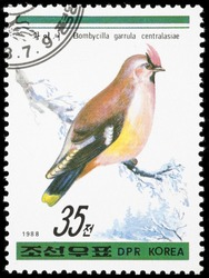 Korea 1988. Postage stamps had been printed in Korea. On the postage stamp depicts Waxwing (Bombycilla garrulus), Bird family Waxwing. The size of a starling. Elegant bird. Pinkish-gray plumage.