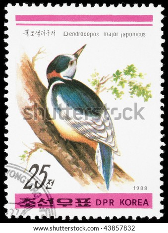 Korea 1988. Postage stamps had been printed in Korea. On the postage stamp shows Spotted Woodpecker small (Latin Dendrocopos minor) - form a family of birds woodpeckers. One of the smallest woodpecker