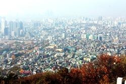 Korea travel FlowerFestival