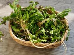 Korean food ingredients Capsella bursa-pastoris, Shepherd's purse