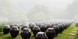 Korean traditional soy sauce jar