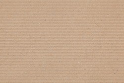 Kraft Paper Texture with Painted Stripes