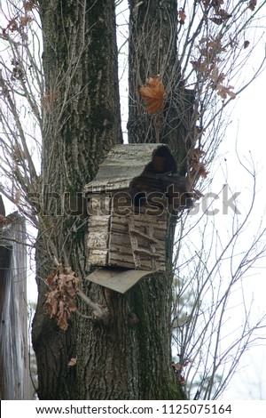 Krasnodar, RUSSIA - April 5, 2013: Old birdhouse on a tree without foliage in early spring, Krasnodar Territory, Russia April 5, 2013  #1125075164
