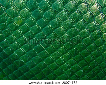 Krikodile leather texture - stock photo