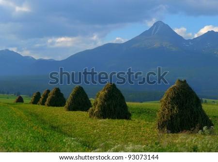 Krivan Mountain, Slovakia with Traditional Haystacks