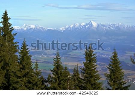 Krivan peak, Slovakia, viewed through high spruce trees