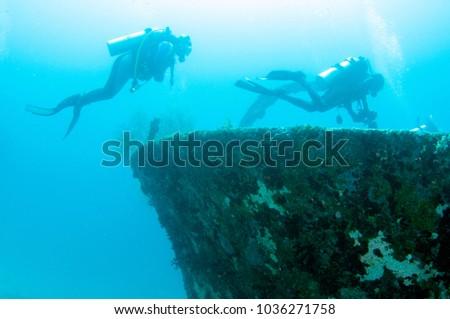 Kuda Giri shipwreck, Maldives. #1036271758