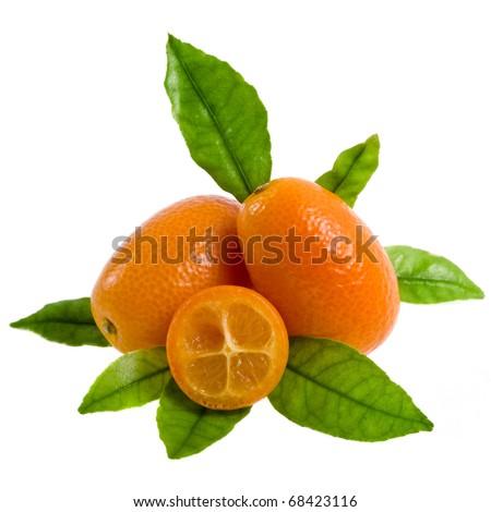 Kumquat stack decor close up on a white background
