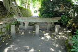 Kurokami Buried Torii buried in the volcanic ash of Sakurajima