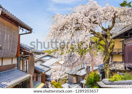 Kyoto, Japan in the Higashiyama district with cherry blossoms the springtime.