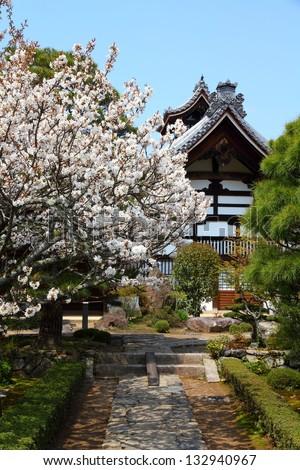 Kyoto, Japan - Tenryuji Temple in Arashiyama. Buddhist zen temple of Rinzai school. UNESCO World Heritage Site with cherry blossom (sakura).
