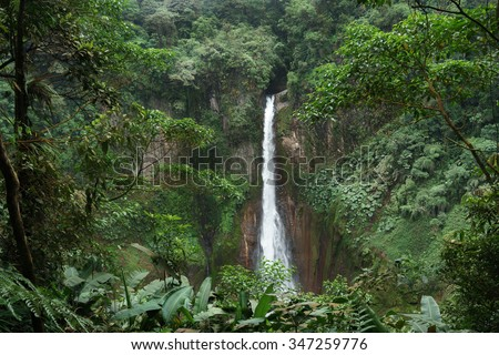 La Fortuna Waterfall in a forest, Alajuela Province, Costa Rica