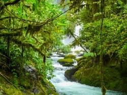 La Paz Waterfall Gardens Nature Park, Alajuela, Costa Rica