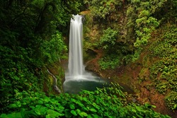 La Paz Waterfall gardens, with green tropical forest in Central Valley, Costa Rica.