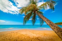 La Perle beach under a cloudy sky. Guadeloupe, Caribbean sea