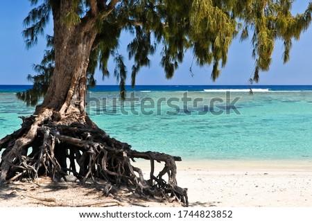 La Saline les Bains beach, Ile de la Reunion Zdjęcia stock ©