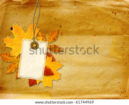 Label, autumn leaves and texture of old paper