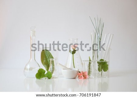 laboratory experiment and research with leaf,oil and ingredient  extract for natural beauty and organic cosmetic skincare product the blank bottle for label science concept. alternative medicine. spa.
