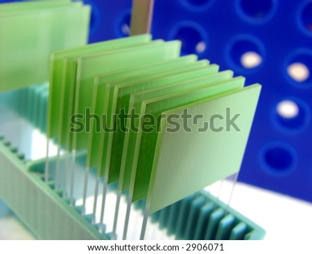 Laboratory glass microscope slides on a holder in a science research lab