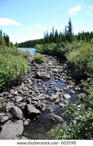 Labrador River in rural area