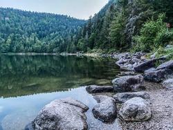 Lac des corbeaux Banks, La Bresse, Vosges, France