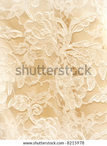 lace - stock photo