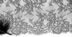lace fabric. bird feather. lace color pale black on a white background. Texture, pattern. When it's time to choose the right pattern for your needs, you can count on my textures.