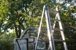 ladder in the garden, Gardening concept