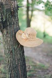 Ladies' straw hat left on the tree