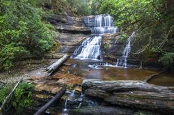 Lady Barron Falls in Mt. Field National Park, Tasmania.